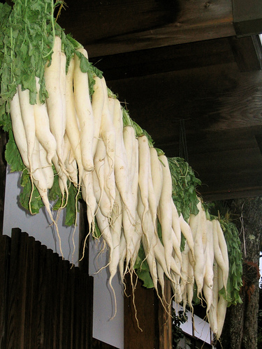 Pickled Daikon Radish Recipe