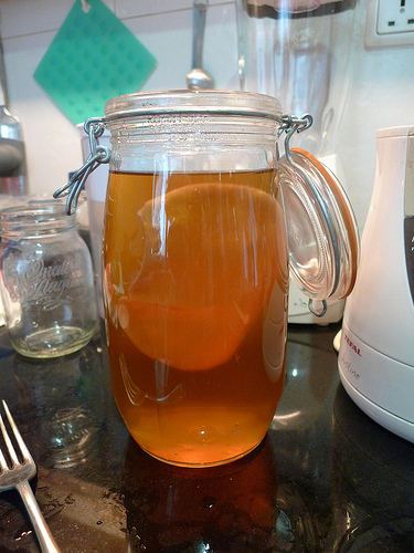 Making Probiotics At Home: Kombucha Tea from Mother Culture